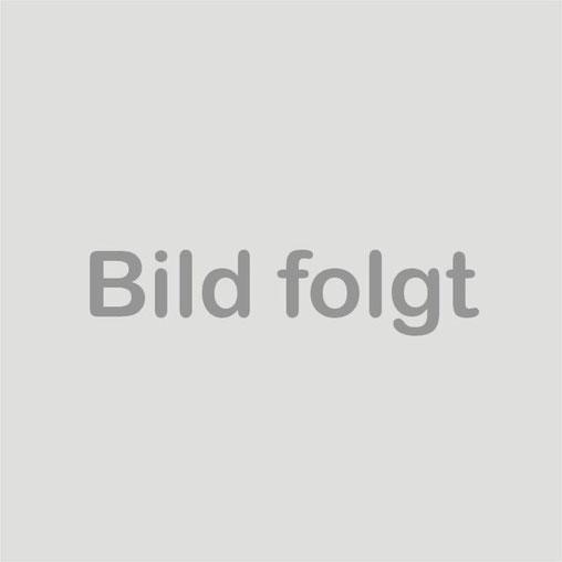 vlnr: Oben:  Dominik Engling, Mark Kambartel, Stephan Fegers, Sebastian Süßmilch, Uwe Müller,  Unten: Benjamin Hensen, Christopher Niehus, Hans Jabs