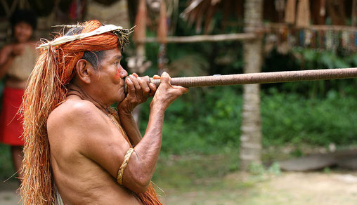 JialiangGao www.peace-on-earth.org — Travail personnel  A Yagua (Yahua) tribeman demonstrating the use of blowgun (blow dart), at one of the Amazonian islands near Iquitos, Peru.