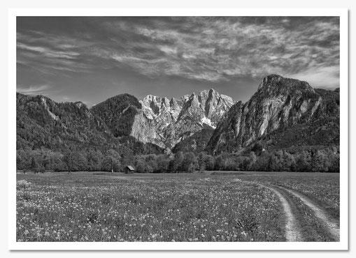 Wenger Wiese © c.rebl 2.Platz Kat.Landschaft