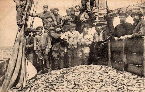 Pêche du capelan pour faire la boete pour la pêche à la morue à bord de la goélette coloniale Georges-André, les équipage sont souvent composé de matelots du Goélo