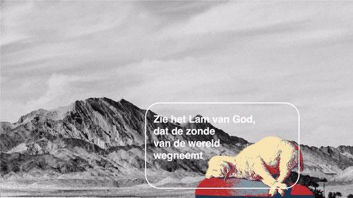 Het lam van God dat de zonde van de wereld wegneemt