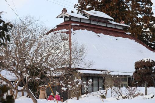 雪の芸術大学校