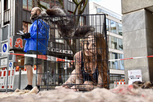 Anti-Pelz Kampagne Sandy P.Peng Deutsches Tierschutzbüro