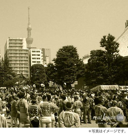 三社祭, 町内神輿連合渡御の集合場所, 浅草寺裏, 観音堂裏広場