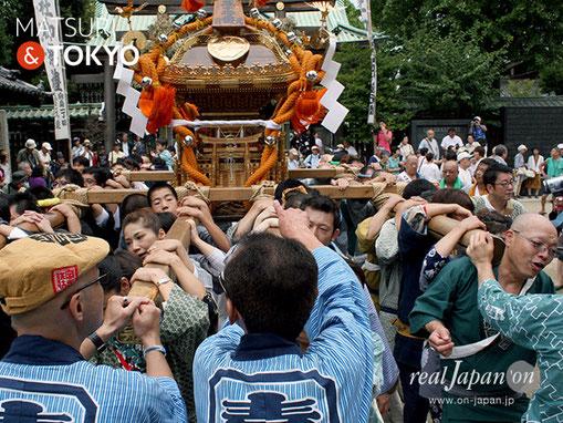 牛嶋神社大祭, 2012年(平成24年) 9月, 向島一丁目町会, 大神輿渡御