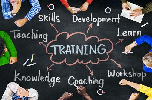 Training trainer kennis vaardigheden competenties interactief leren ontwikkelen