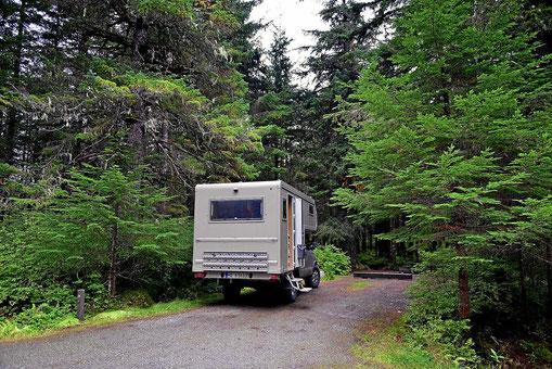 """Ein typisch amerikanischer """"Site"""". Mitten im Wald, riesig groß und der nächste Site ist weit weg. Da macht selbst zelten einen Spaß."""
