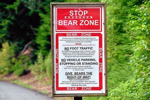 """Das """"Bärengebiet"""" darf nicht per Fuß betreten werden."""