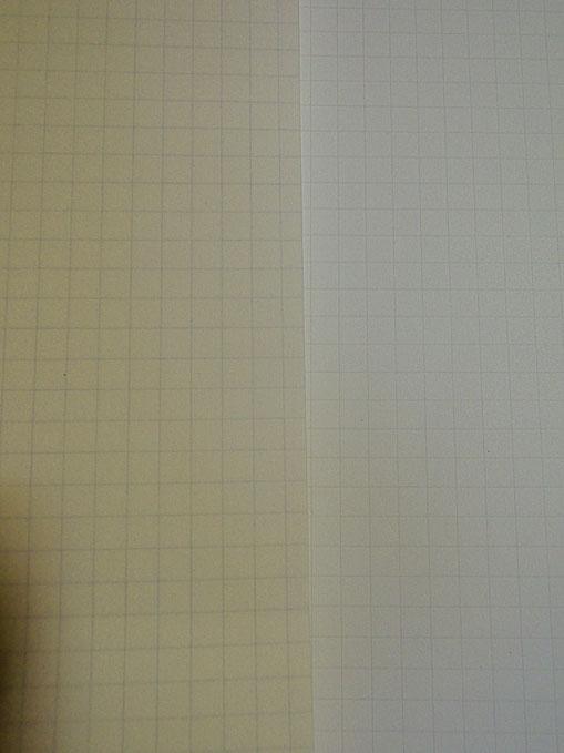 左はツバメノート、右はナカプリバイン