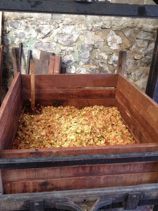 Lagar con trozos de manzana de los que ya se ha sacado la sidra(magaya).