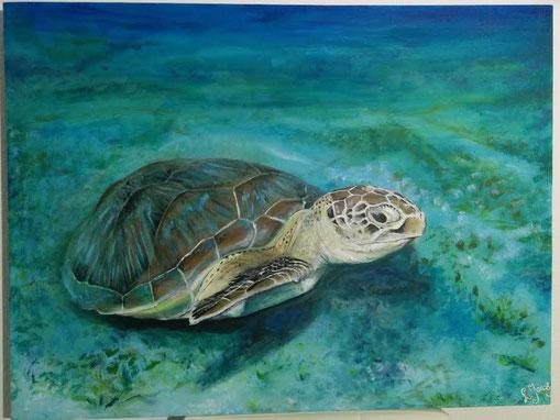 Turtle. 2014 Acryl op doek.