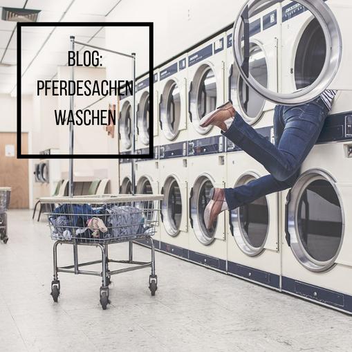 Mädchen sucht in der Waschmaschine ihre Pferdesachen!