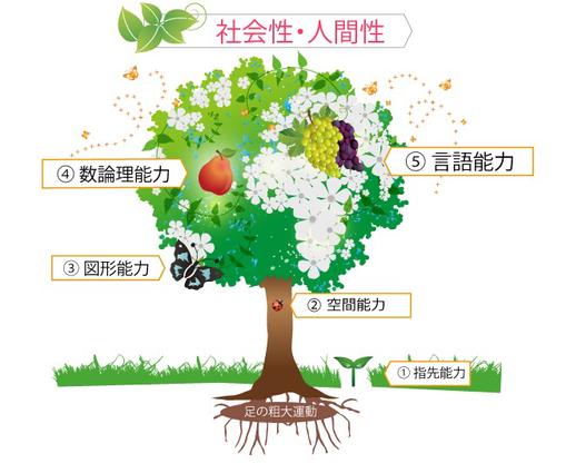 思考力の樹/脳の進化