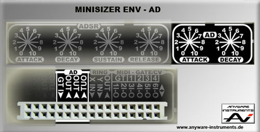 MINISIZER - ENV Section - AD Module