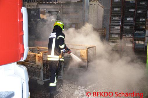 Feuerwehr, Blaulicht, Übung, Suchaktion