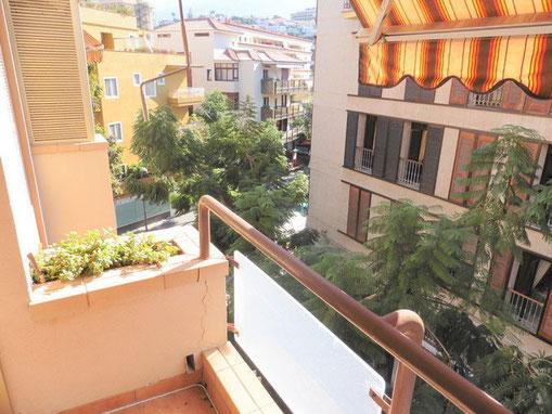 Vom Balkon sieht man die mit Bäumen gestaltete Strasse vor dem Haus.