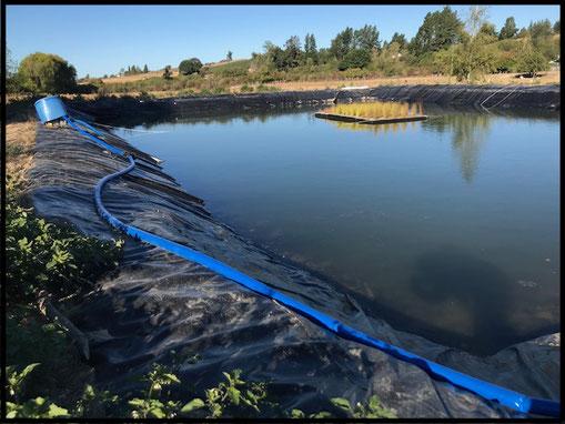 Pond Liner Tasman
