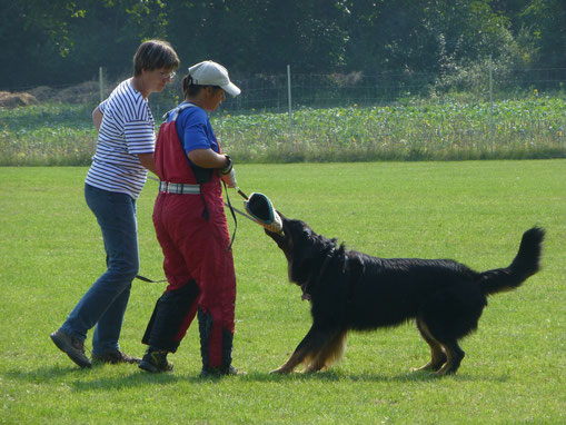 Im September 2014 in Tauberbischhofsheim trainierte uns Sabine Kerschner.