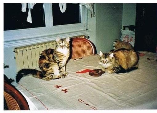 """CHAINA et CHEYENNE: """"On partage le Bretzel ? """""""