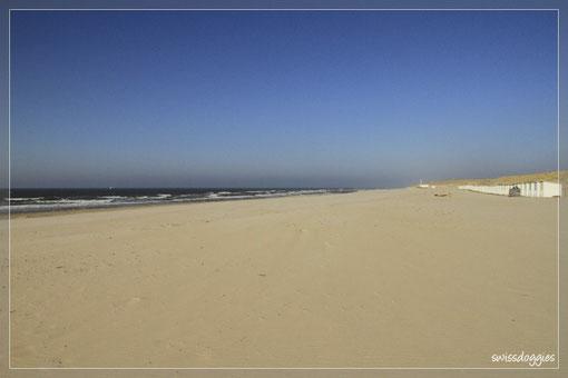 ... wieder meilenweiter Sandstrand ganz für uns allein :-) Die Temperaturen aber auch recht kühl... kaum zu glauben, dass hier in ein paar Monaten gebadet wird.