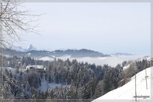 Hier sind wir auf der Fahrt Richtung Eriz, nach Oberlangenegg, hinten seht ihr das Stockhorn und unter der wallenden Nebeldecke liegt Steffisburg...