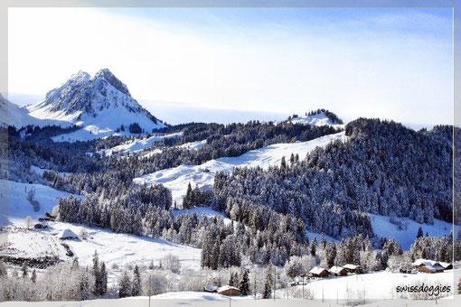 Blick hinunter auf das kleine Skigebiet (links).