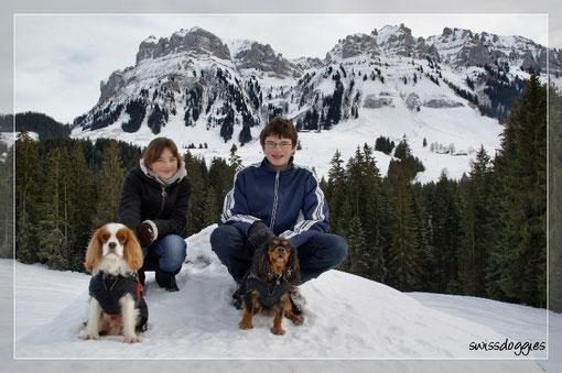 In schöner Bergkulisse genossen wir den Spaziergang...