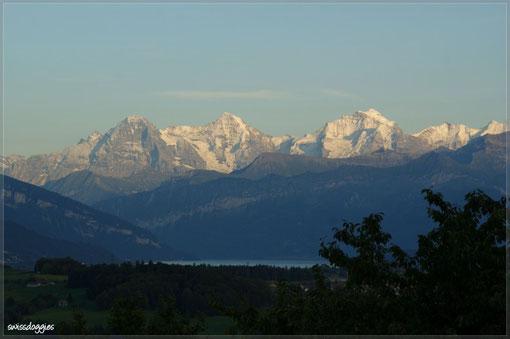 Abendstimmung in Burgistein mit Sicht auf Eiger, Mönch und Jungfrau