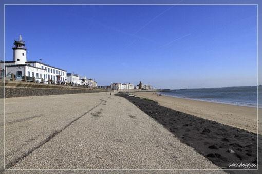 Der Strand - noch fast menschenleer - trotz wolkenlosem Sonntag.