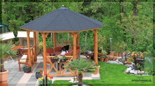 War ein schönes Stückchen Arbeit, den Pavillon zu grundieren und zu streichen.