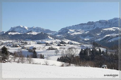 Nach 5 Min. Fahrt: Blick von Fahrni Richtung Schwarzenegg und Eriz