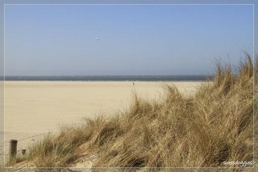 Auch hier gibt es einen riesigen - wirklich RIESIGEN-, fast menschenleeren Strand - wunderschön!