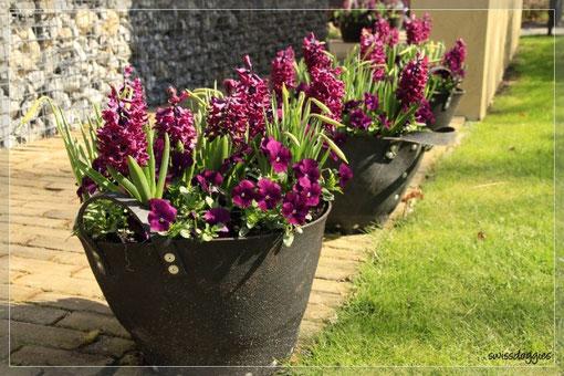 geben Inspiration für den eigenen Garten.