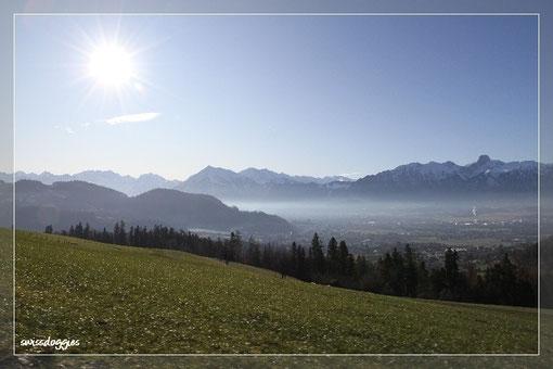 Blick hinunter nach Steffisburg und auf die Berner Alpen - kein Schnee - alles grün....