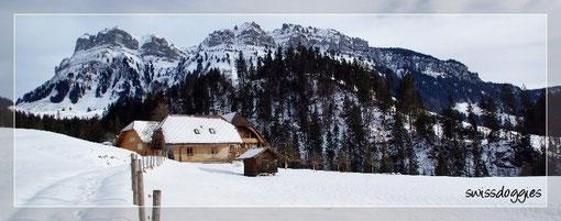 ...der schönen Bergwelt...