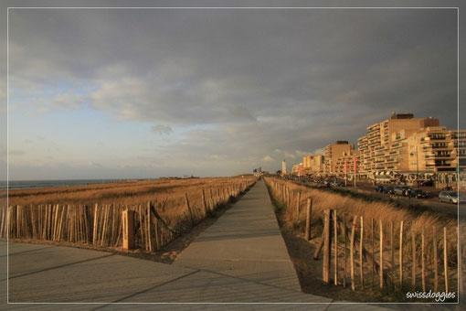 Strand bei Noordwijk