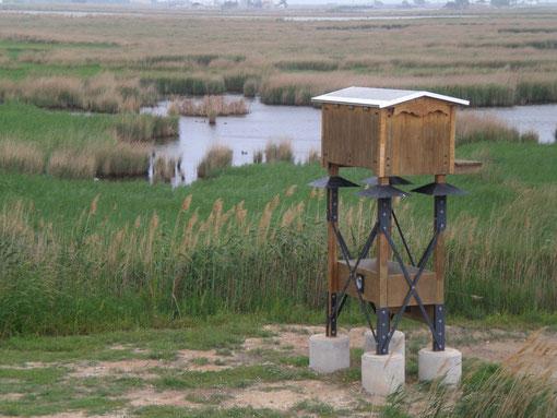 Caixa-refugi per a rates penades al P.N. del Delta de l'Ebre. Autor: V. Sancho