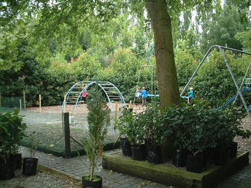 広い園内に子供が遊べる公園が整備されていました