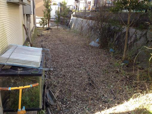 除草剤を散布した後草を刈り取ります。