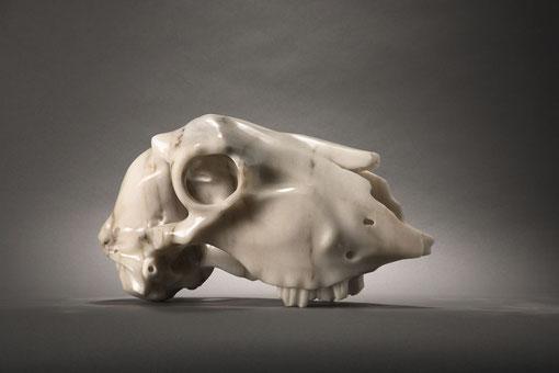 """ goat´s head"" ( carpe diem) aus Marmor - Foto: Markus Müller"