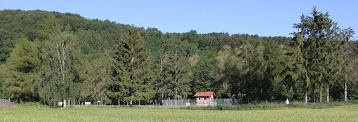 Übungsplatz Wichmannshausen