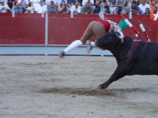 Ricardo Areias e Pedro à 1ª tentativa