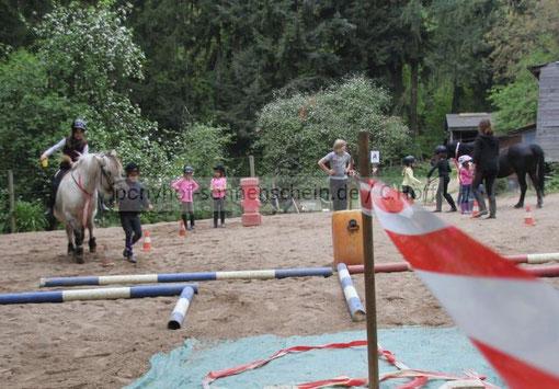 Kindergeburtstage mit Ponyreiten auf dem Ponyhof für Köln, Leverkusen und Bergisch Gladbach