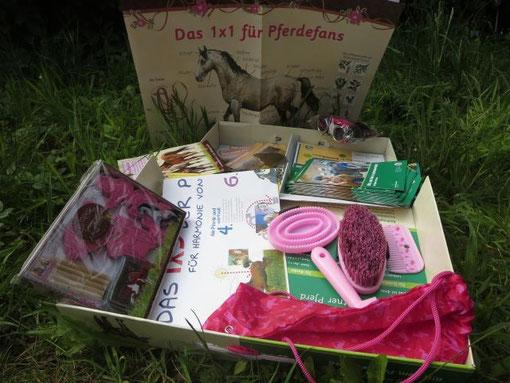 In Kita und Kindergarten in Bergisch Gladbach und Köln Pferde sowie Ponys entdecken.