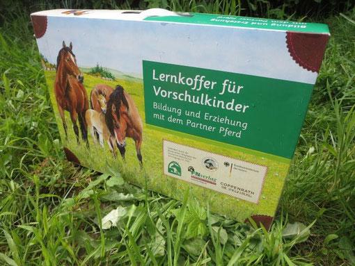 Pferde und Ponys in Kita, Kindergarten in Köln Bergisch Gladbach.