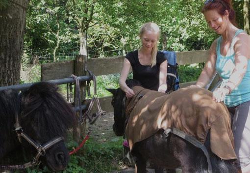 Begeisterte Praktikanten empfehlen das Praktikum in Bergisch Gladbach am Ponyhof Sonnenschein