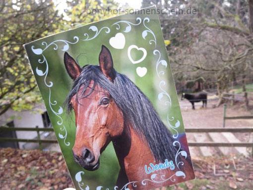 Ponyhof Kindergeburtstage mit Ponyreiten