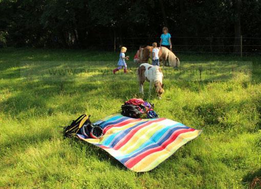 Wo fühlen sich Kinder und Ponys sehr wohl? In der Natur als natürliche Umgebung!