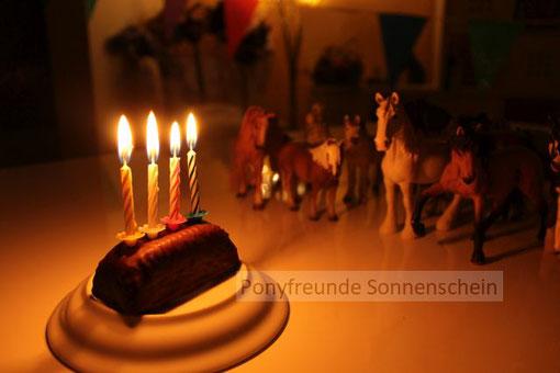 Kindergeburtstage im Winter - Ponys mit kuscheligem Winterfell