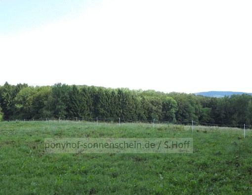 Ponyhof Umgebung Bergisches Land